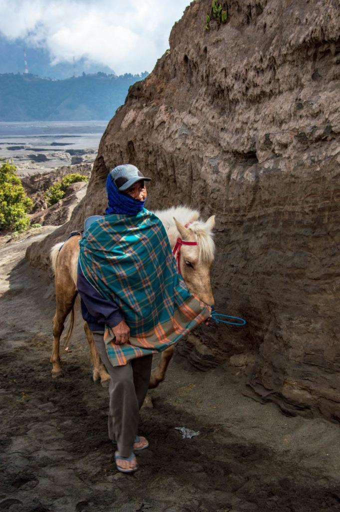 Locals horse indonesia