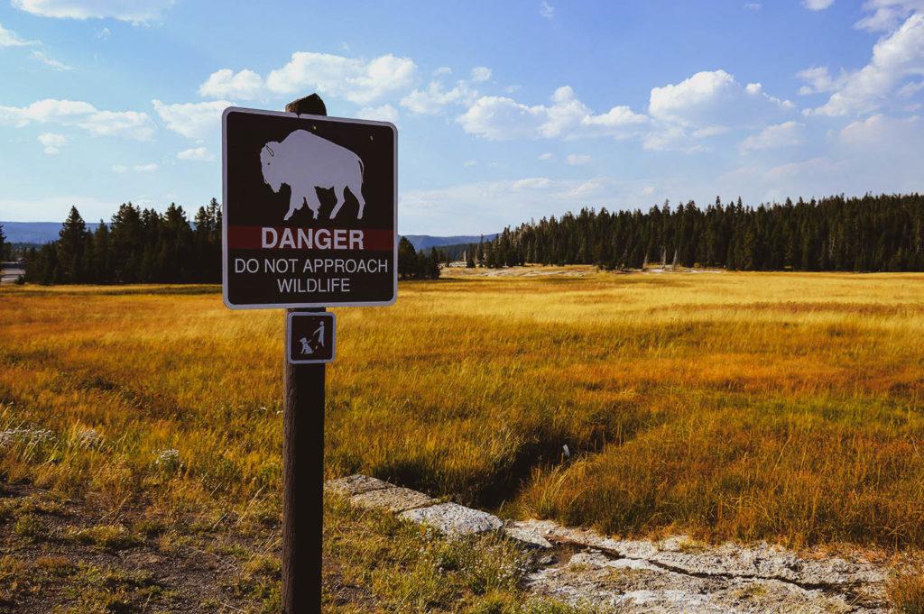 danger sign buffalo yellowstone usa