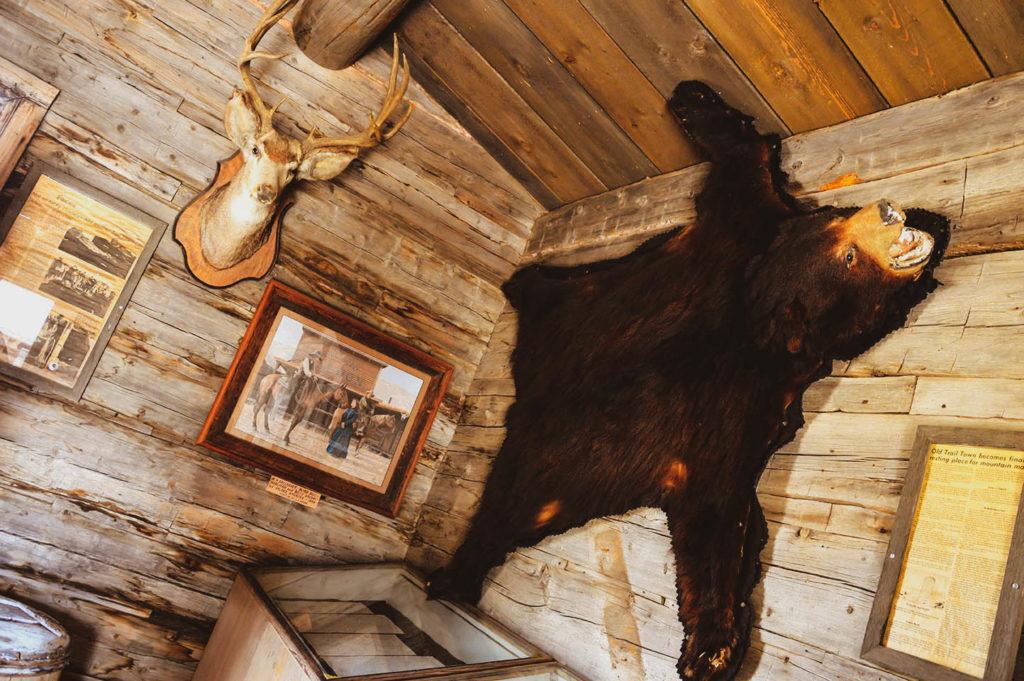 bear old town usa