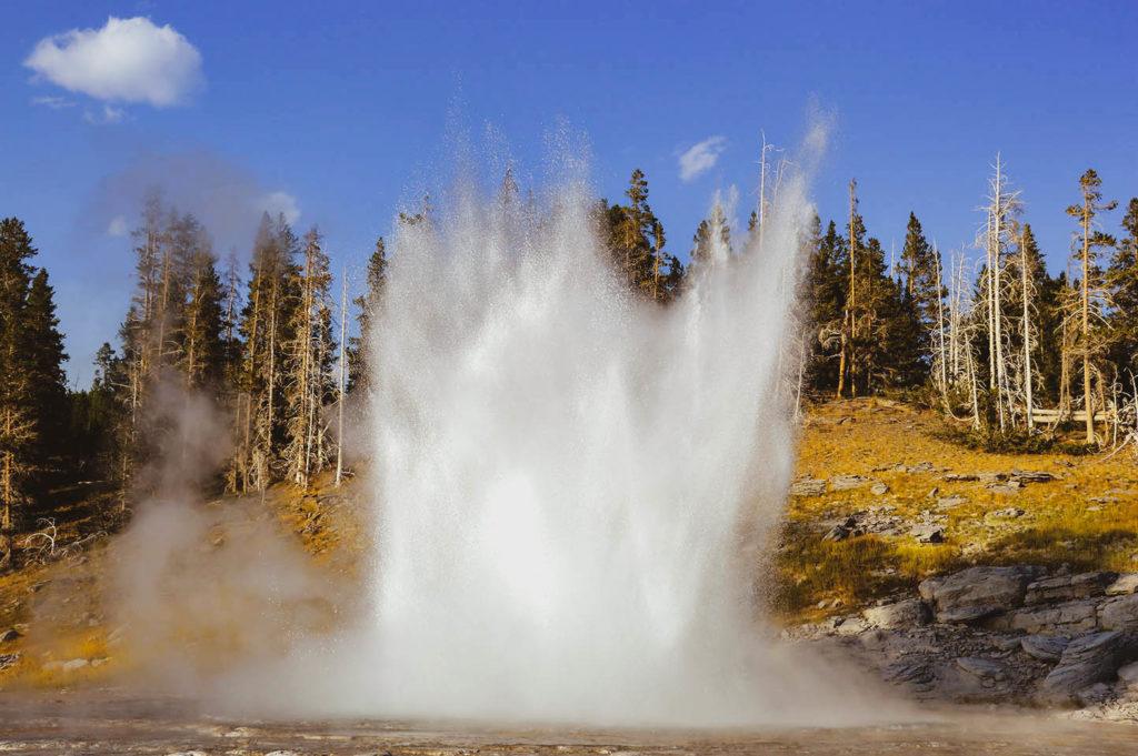 geyser flow yellowtone usa